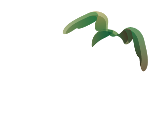 Historical Flight Event